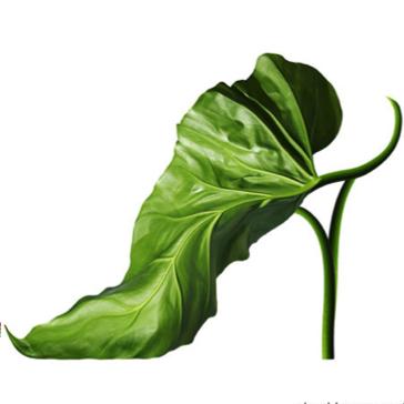 L'agence de communication Nostromo vous propose une selectioin des dix chaussures les plus étranges
