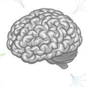 Les biais cognitifs sont un domaine fascinant a explorer, explique l'agence de communication Nostromo